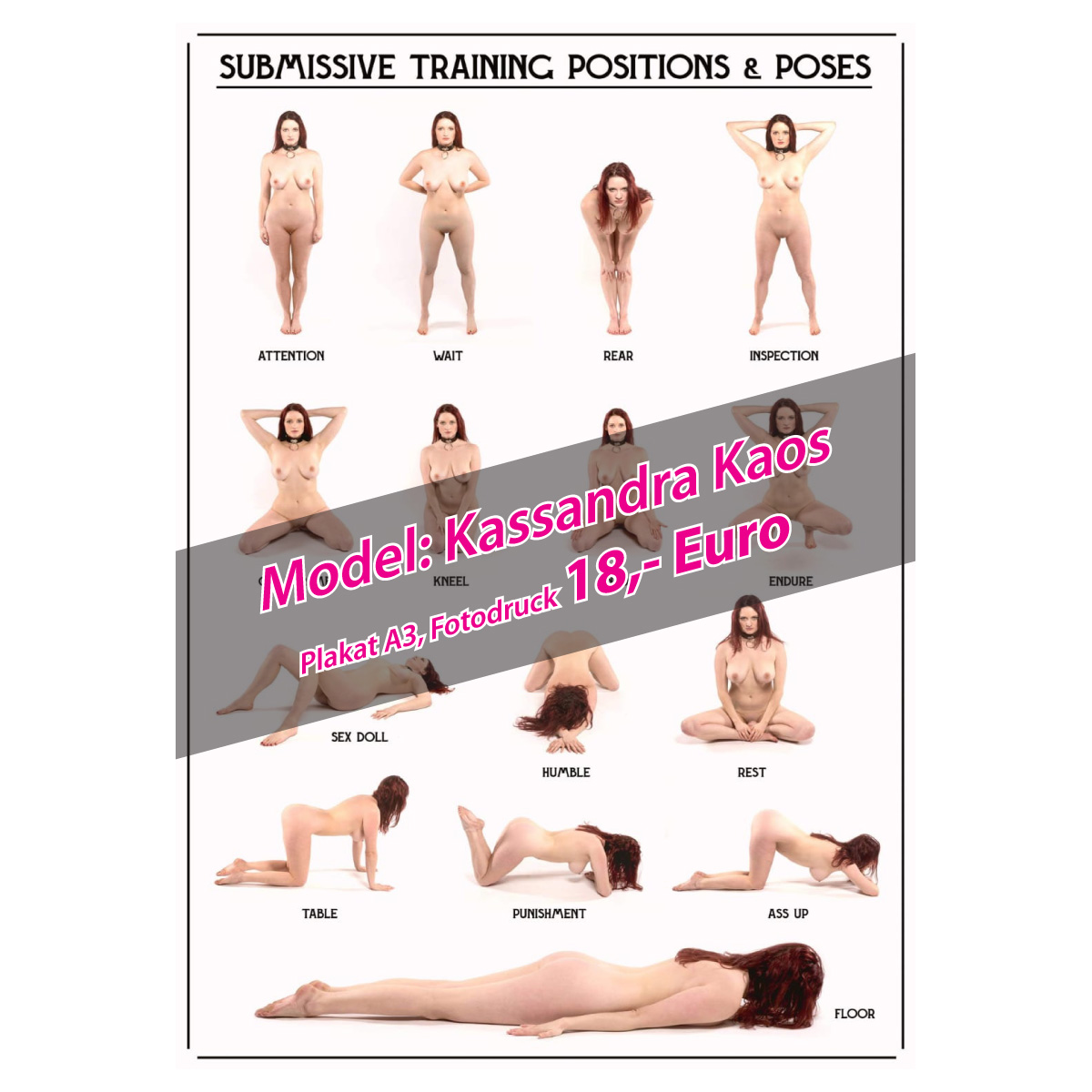 Fotoposter: submissive Training-Positions & -Poses